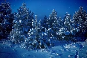Зимові шпалери для робочого столу