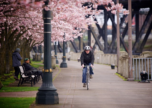 The City that Bikes