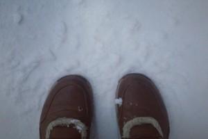 Перший сніг в Instagram