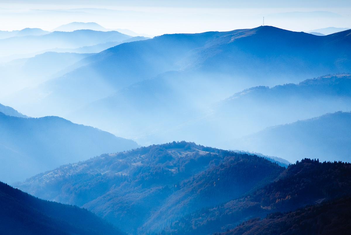Розмальовка на тему голубої димки