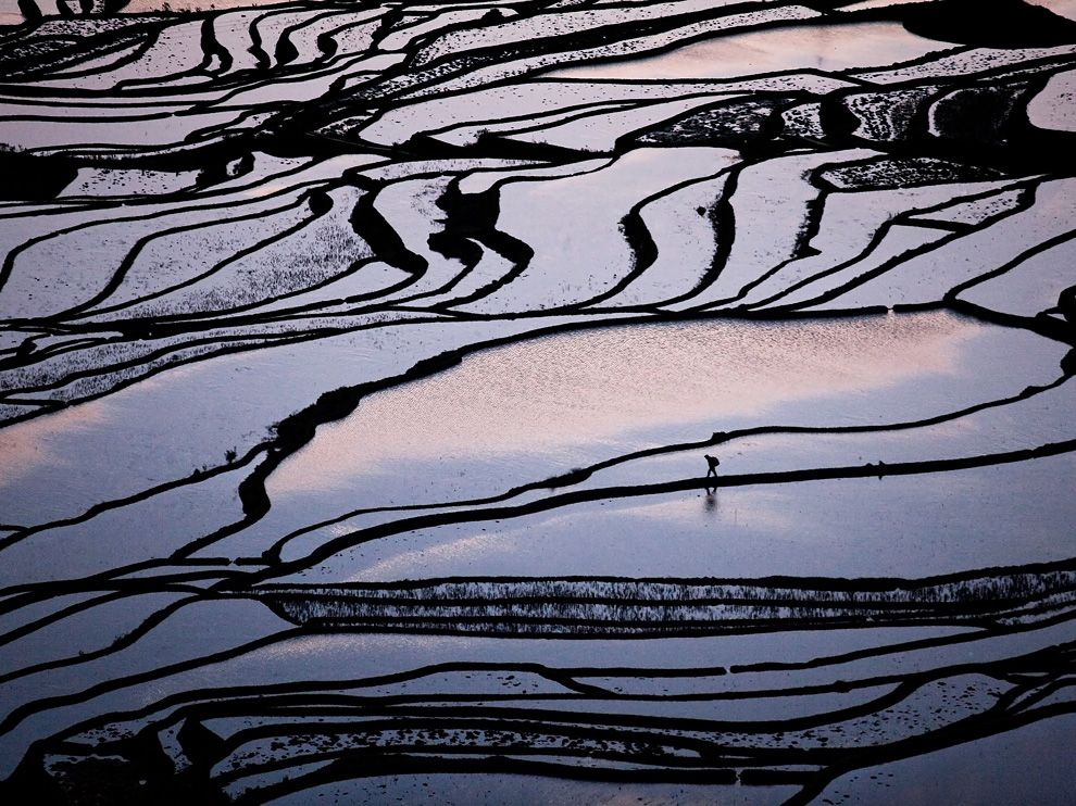 Рисові поля в Китаю (Byongsun Ahn, Your Shot)