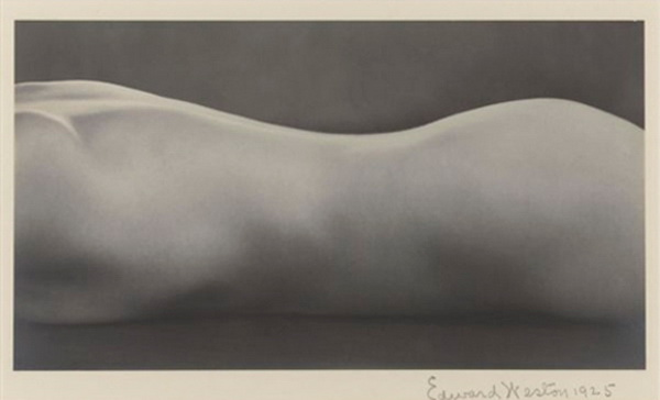 Edward Weston, Nude (1925), $1 609 000