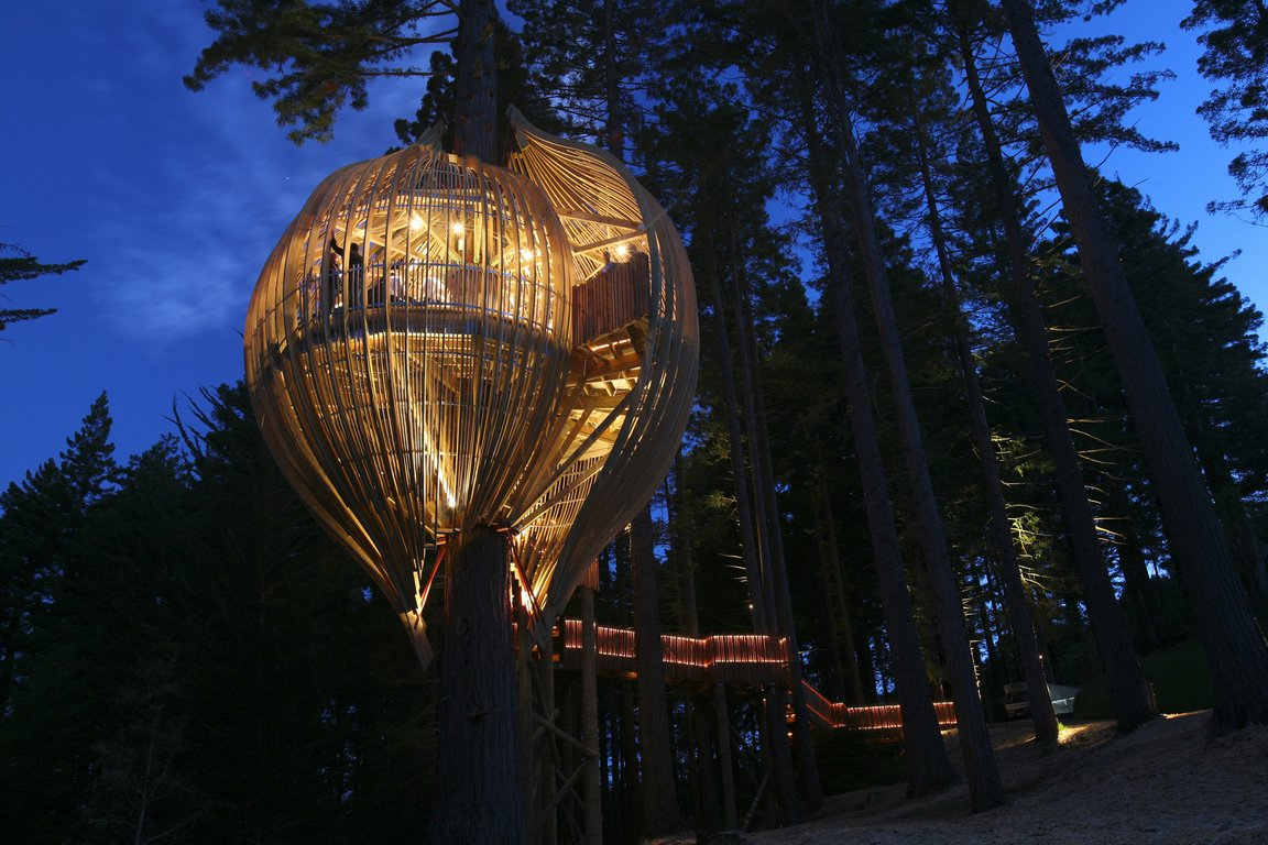 Yellow treehouse, ресторан на дереві