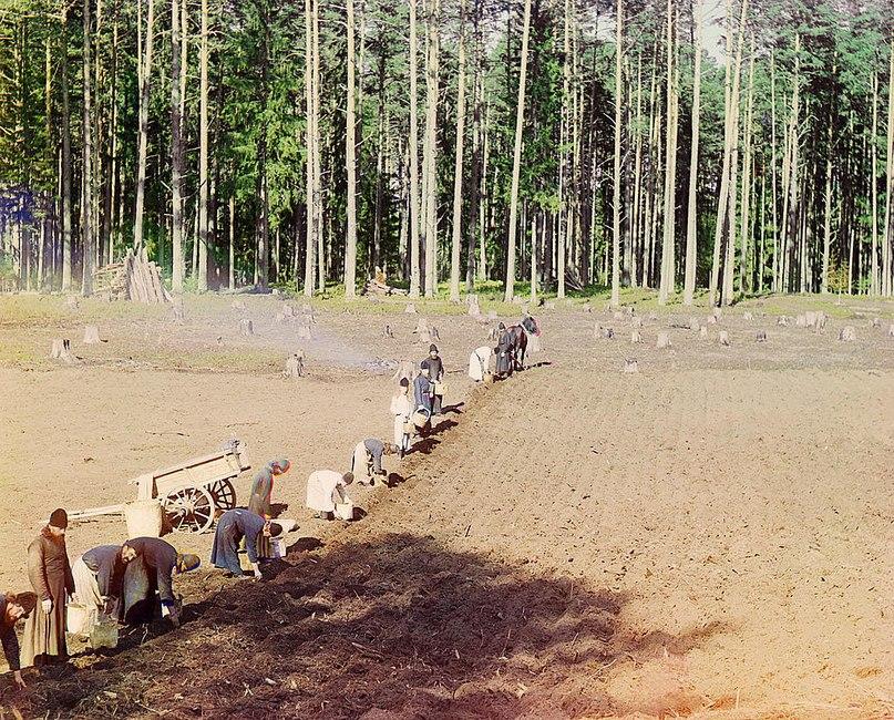 Кольорові фото з царської Росії