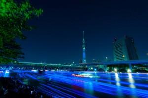 Tokyo Hotaru Fesival