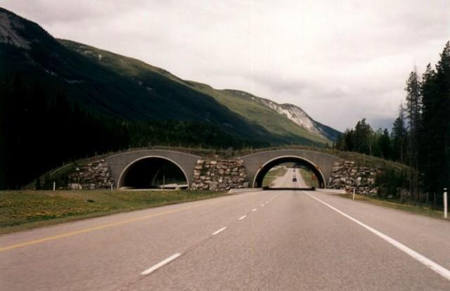 Національний парк Банф, Канада