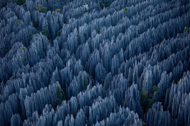 Кам'яний ліс, Китай