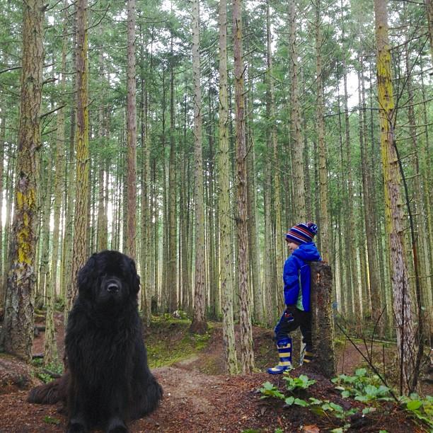 Хлопчик і собака: дружба назавжди