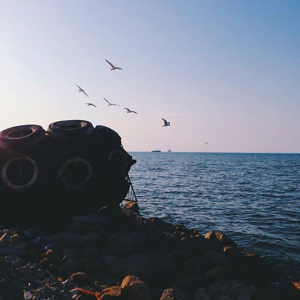 Inspired Instagrams: найкращі фото читачів