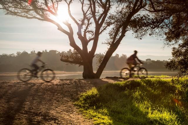 stanford-bike