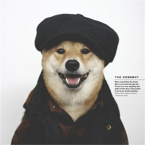 Menswear Dog_03