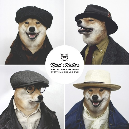 Menswear Dog_07