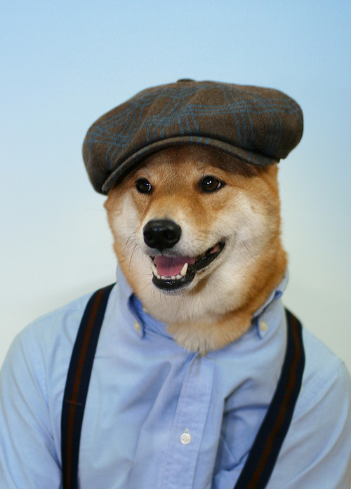 Menswear Dog_15