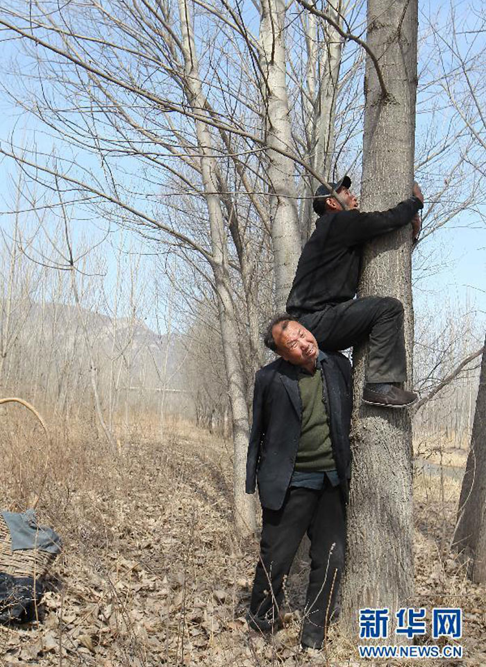 blind-man-amputee-plant-trees-china-3
