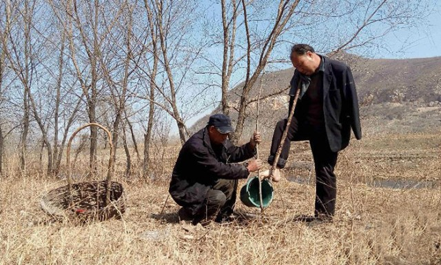 blind-man-amputee-plant-trees-china-5